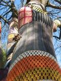 在一套羊毛服装的树 免版税库存照片