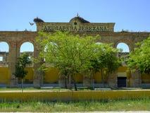 在一家遗弃工厂,西班牙的筑巢鹳 免版税库存照片