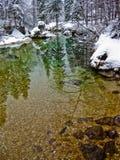 在一座冷的山的冬天反射在湖Bohinj,斯洛文尼亚阿尔卑斯附近放出,河Sava 免版税库存照片