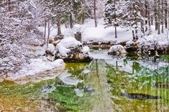 在一座冷的山的冬天反射在湖Bohinj,斯洛文尼亚阿尔卑斯附近放出,河Sava 免版税图库摄影