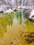 在一座冷的山的冬天反射在湖Bohinj,斯洛文尼亚阿尔卑斯附近放出,河Sava 库存图片