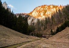 在一座密集的森林和高山中间使显示村庄环境美化 图库摄影