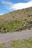 在一座山一边的道路在安蒂萨纳火山生态储备,厄瓜多尔 库存图片