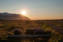 在一座山后的日落在冰岛 库存图片
