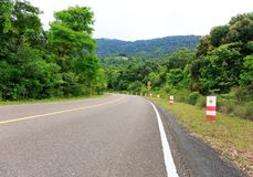 在一座山的上面的弯曲的路与绿色树和Traff的 免版税库存图片