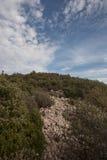 在一座山的岩石道路与绿色灌木 免版税库存图片