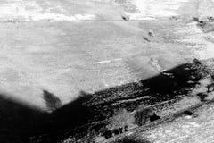 在一座山的树阴影与熔化的雪 图库摄影