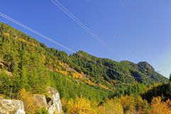 在一座山的秋天风景与五颜六色的树和输电线 免版税库存照片