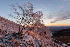 在一座山的美好的日落,当雪报道地面、霜在树分支和温暖的光反射 库存图片