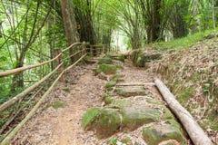 在一座山的走的足迹在泰国 库存照片