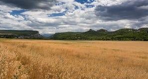 在一座山顶部的草在秋天风景 图库摄影