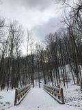 在一座桥梁的一个华美的场面在一个公园在帕尔马,俄亥俄,美国 库存图片
