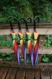 4在一座桥梁的五颜六色的伞在森林里在德国 免版税库存照片