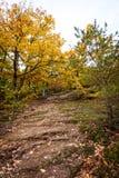 在一座石山的土气道路在秋天季节 库存图片