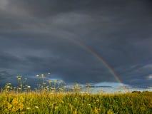 在一座神圣桥梁的鸟-彩虹 免版税库存图片