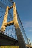 在一座缆绳被停留的桥梁的塔的钢皮带 免版税图库摄影