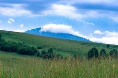 在一座蓝色山上面的一朵云彩与一个青山倾斜,树,在前景的高草 免版税库存照片