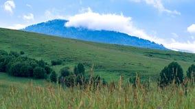 在一座蓝色山上面的一朵云彩与一个青山倾斜,树,在前景的高草 库存照片