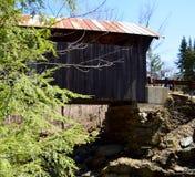 在一座被遮盖的桥下 库存照片