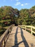在一座走的桥梁的阴影 免版税库存图片