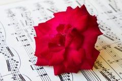 在一张古老活页乐谱的红色玫瑰 库存图片