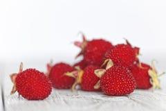 在一张土气白色木桌上的西藏莓 在白色的红色莓果 浅深度的域 库存照片
