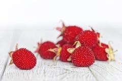 在一张土气白色木桌上的西藏莓 在白色的红色莓果 浅深度的域 免版税库存照片