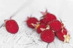 在一张土气白色木桌上的西藏莓 在白色的红色莓果 浅深度的域 免版税库存图片