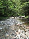 在一张岩石床的山小河 库存图片