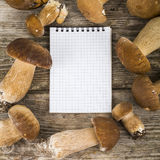 在一张木桌上的可食的牛肝菌蕈类和笔记本 图库摄影