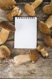 在一张木桌上的可食的牛肝菌蕈类和笔记本 库存照片