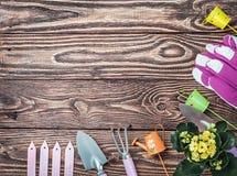 在一张木桌上的园艺工具 免版税库存图片
