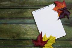 在一张木桌上的干净的笔记本和槭树叶子 秋天背景特写镜头上色常春藤叶子橙红 在视图之上 库存照片