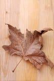 在一张木桌上的干燥叶子 免版税库存图片
