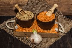 在一张木桌上的扁豆种子与麻袋布 扁豆的红色和绿色膳食补充剂种子  legum的有用的扁豆 图库摄影