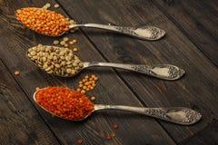 在一张木桌上的扁豆种子在生来有福 扁豆红色和绿色食物添加剂种子  豆类fa的有用的扁豆 免版税图库摄影