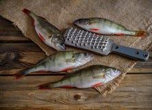 在一张木桌上的新鲜的河栖息处 免版税库存照片
