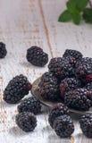 在一张木桌上的新鲜的被采摘的黑莓 图库摄影