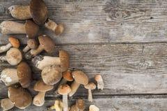 在一张木桌上的未加工的蘑菇 可食的牛肝菌蕈类和黄蘑菇 免版税库存图片