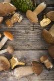 在一张木桌上的未加工的蘑菇 可食的牛肝菌蕈类和黄蘑菇 免版税图库摄影