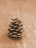 在一张木桌上的杉木锥体 库存照片