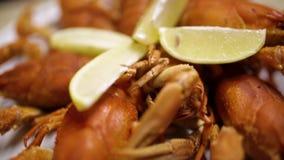 在一张木桌上的煮熟的红色小龙虾在乔治亚鱼餐馆  在一块白色板材的红色小龙虾 关闭 影视素材
