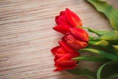 在一张木桌上的红色郁金香 免版税库存图片