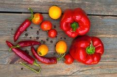 在一张木桌上的辣椒,辣椒粉,红色和黄色蕃茄 免版税图库摄影