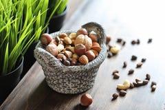 在一张木桌上的鲜美坚果 库存图片