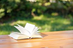 在一张桌上的书在风 免版税库存图片