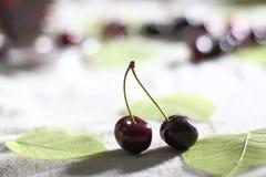 在一张桌上的樱桃与有些叶子 免版税库存图片