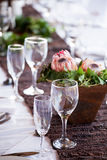 在一张桌上的酒和香槟玻璃与普罗梯亚木开花 库存图片