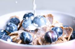 在一张白色桌上的充分的muesli碗用蓝莓和牛奶飞溅 健康早餐谷物用牛奶,种子,果子 燕麦剥落 免版税库存照片