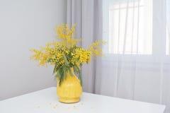 在一张白色桌上的含羞草花 库存照片